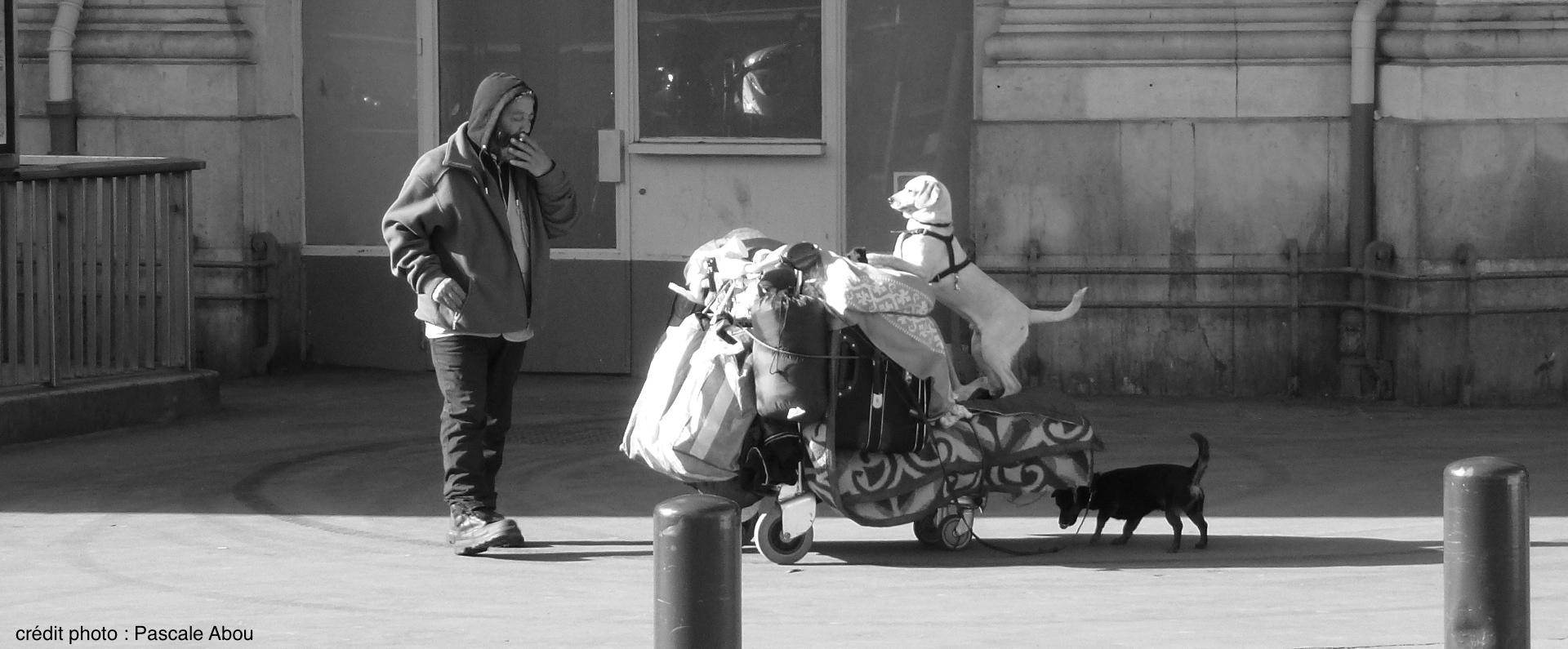 Les SDF de Toulouse se mobilisent pour un hébergement digne