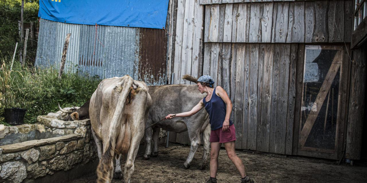 L'Ariège : Terre d'accueil et de savoir-faire méconnus