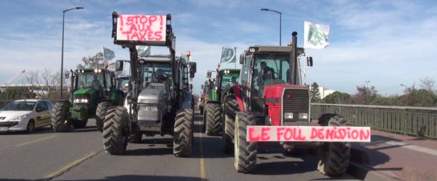 Des agriculteurs manifestent à Toulouse contre la «directive nitrate»