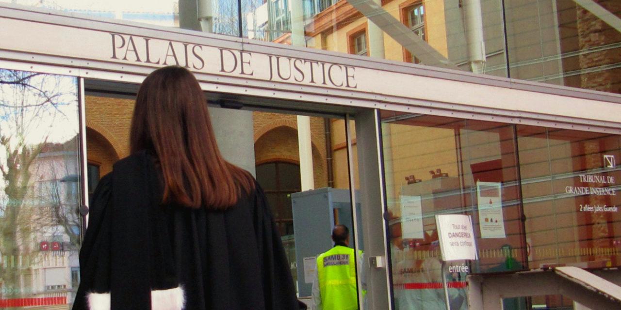 Tribunal: ce public au plaisir coupable